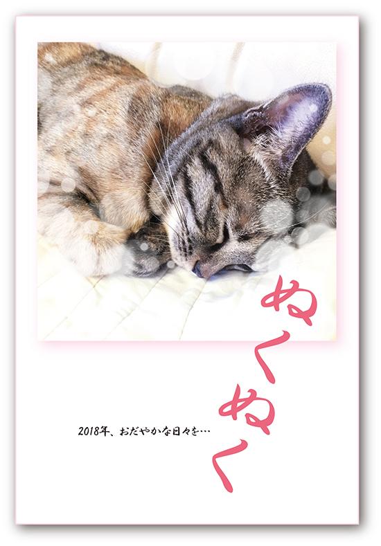 2018年_自宅NET用 (1).jpg